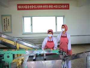 Rugrado soap factory in Pyongyang