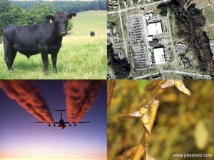 Hot issues: American cattle, the NSA headquarters, airline emissions and soy beans (USDA, US Air Force, Google Earth)